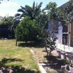 6. Garden 9 Glen Eira